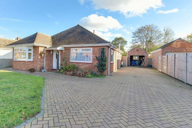 Thumbnail Detached bungalow for sale in Winston Avenue, Colchester