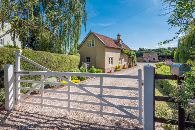 Thumbnail Detached house for sale in Cockfield, Bury St Edmunds, Suffolk