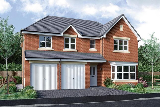 "Thumbnail Detached house for sale in ""Kinnaird"" at Rosehall Way, Uddingston, Glasgow"