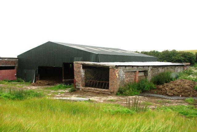 Thumbnail Farmhouse for sale in Little Ervie, Leswalt