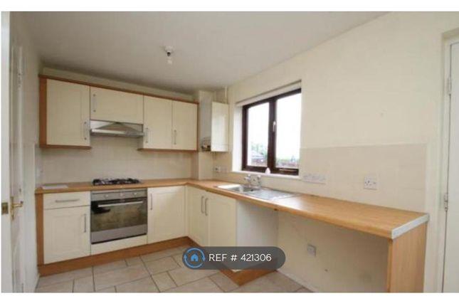 Thumbnail Semi-detached house to rent in Laurel Court, Camelon, Falkirk