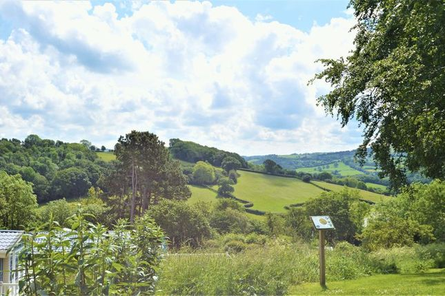 Countryside View of Caerwys Hill, Caerwys, Mold CH7