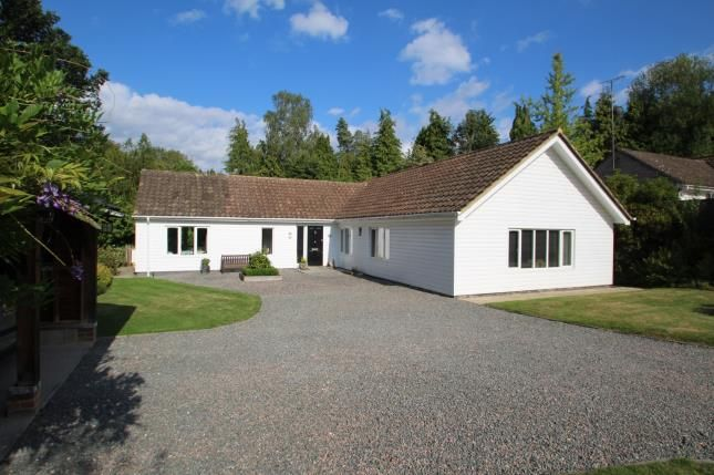 Thumbnail Bungalow for sale in Oakfield, Hawkhurst, Cranbrook, Kent