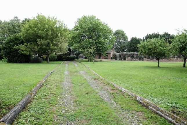 Thumbnail Detached bungalow to rent in Green Lane, Eaton Bray, Bedfordshire