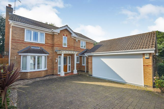 Thumbnail Detached house for sale in Cascade Grove, Littleover, Derby
