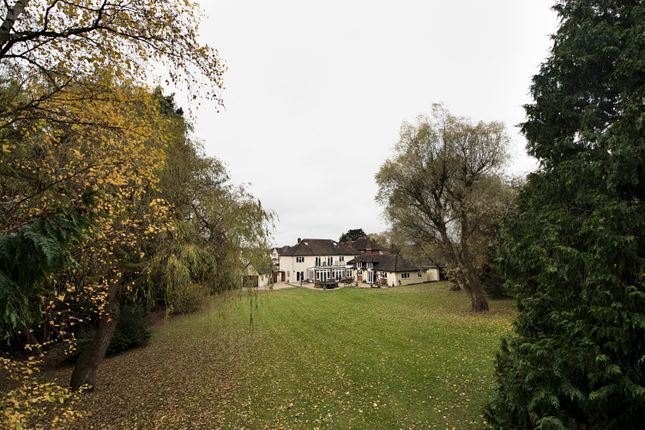Thumbnail Detached house for sale in Shelley Grove, Loughton