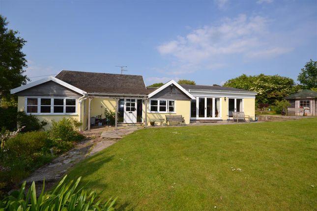 Thumbnail Detached bungalow for sale in Eype, Bridport