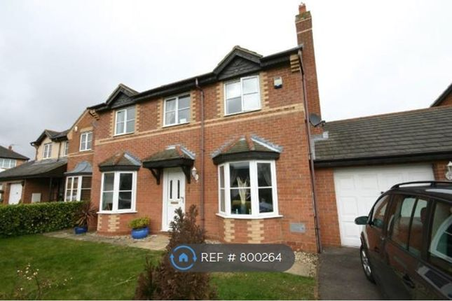 Thumbnail Detached house to rent in Sykes Croft, Emerson Valley, Milton Keynes