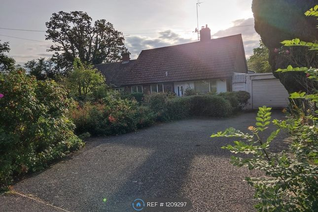 3 bed bungalow to rent in College Lane, Hatfield AL10