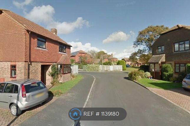 Room to rent in Gilbert Way, Hailsham BN27