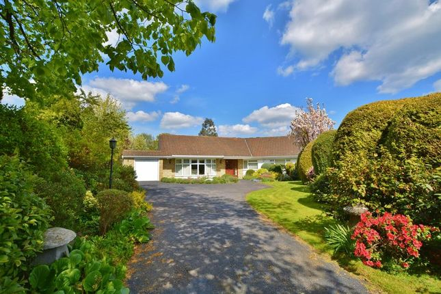 Thumbnail Detached house for sale in Malkin Drive, Beaconsfield