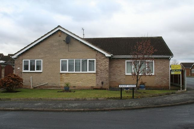 Thumbnail Detached bungalow for sale in Ascot Close, Mexborough