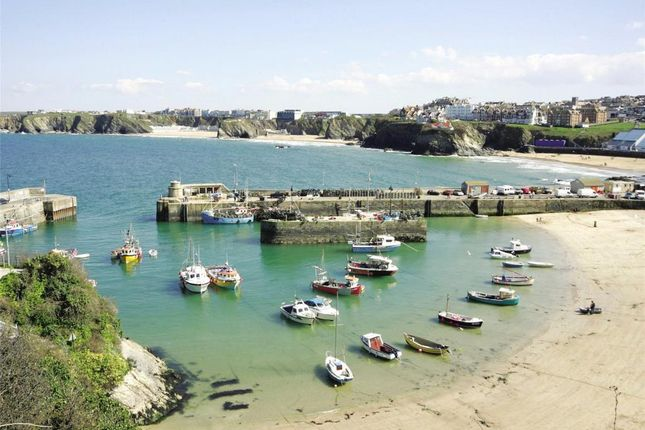 Newquay Harbour of Nansledan, Quintrell Road, Newquay TR7