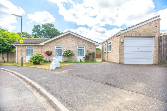 Thumbnail Detached bungalow for sale in Caldwell Road, Windlesham, Surrey