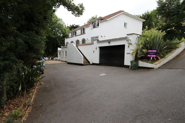 Thumbnail Detached house for sale in Redgate Heights, Torquay