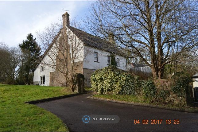 Thumbnail Detached house to rent in Holsworthy Rd, Hatherleigh