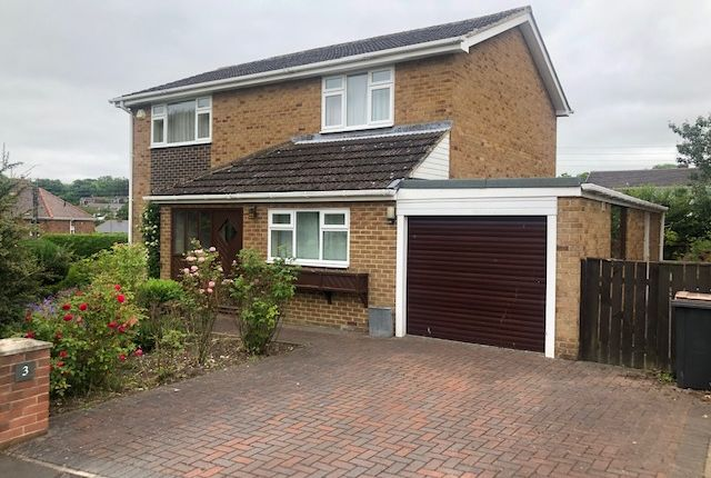 Thumbnail Detached house for sale in Mount View, Lanchester