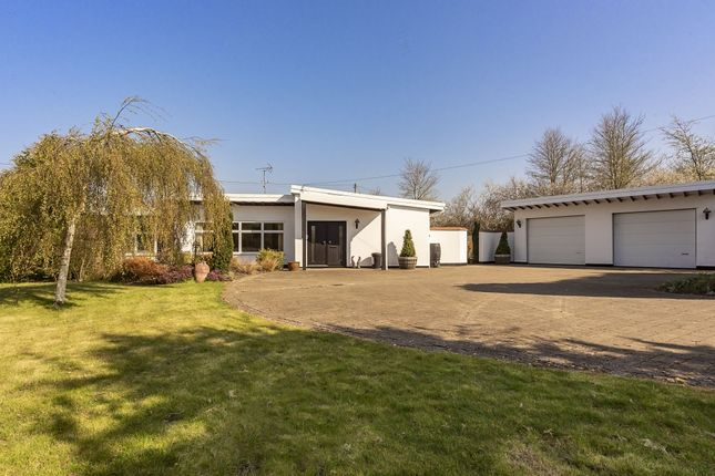 Thumbnail Detached bungalow for sale in Marsh, Aylesbury