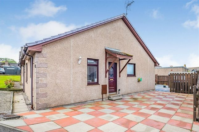 Thumbnail Semi-detached bungalow for sale in Scotston Place, St Cyrus, Montrose, Aberdeenshire