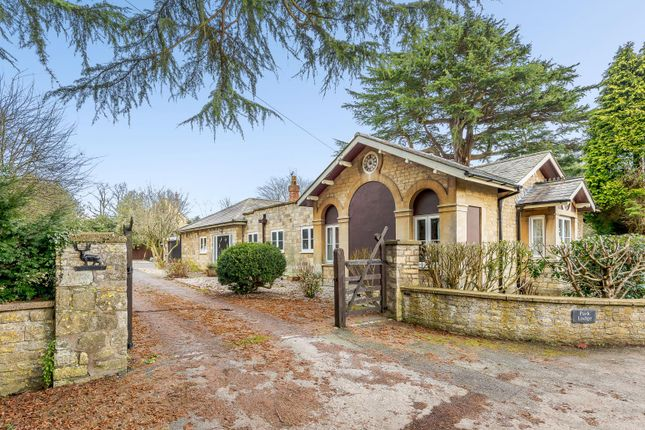 Thumbnail Detached bungalow for sale in High Street, Whittlebury, Towcester