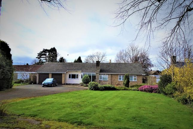 Thumbnail Detached bungalow for sale in Gallimore Close, Glenfield, Leicester