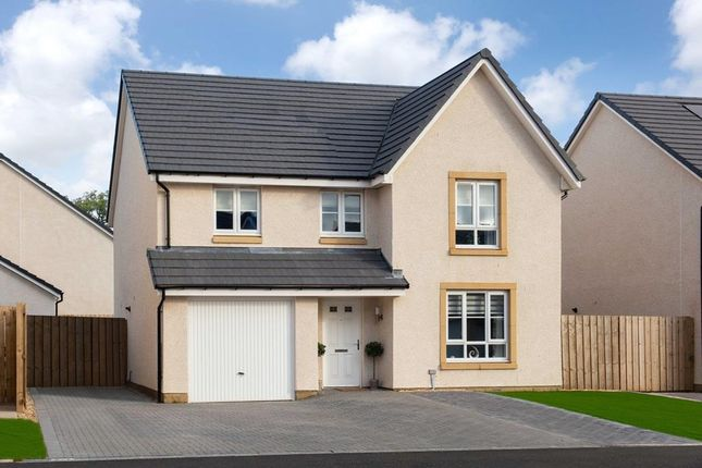 """4 bed detached house for sale in """"Cullen"""" at Castlelaw Crescent, Bilston, Roslin EH25"""