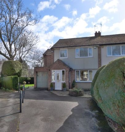 Thumbnail Semi-detached house to rent in Maple Close, Harrogate