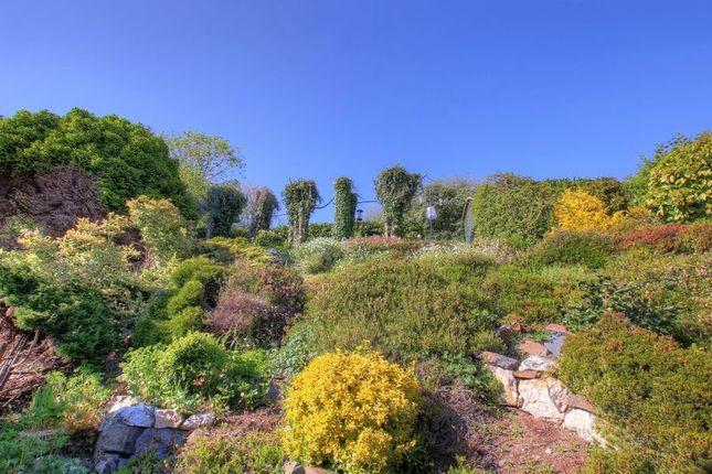 Rear Garden of Tamar & St. Ann's Cottages, Honicombe Park, Callington PL17