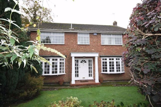 Thumbnail Detached house to rent in St James Road, Melton
