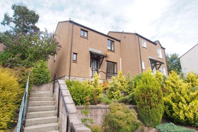 Thumbnail Semi-detached house to rent in Garthdee Road, Garthdee