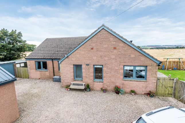 Thumbnail Bungalow for sale in Drunkendub, Arbroath, Angus