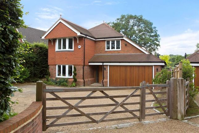 Thumbnail Detached house to rent in Guildford Road, Cranleigh