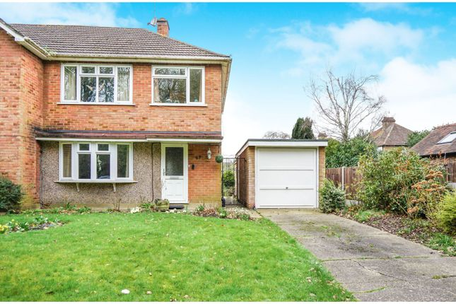 Thumbnail Semi-detached house for sale in Hartswood Road, Brentwood