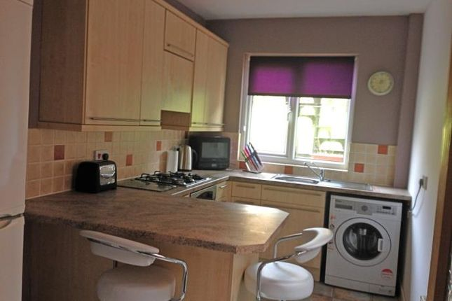 Thumbnail Flat to rent in 18 Rotchell Road, Dumfries