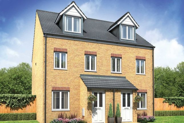 "Thumbnail Semi-detached house for sale in ""The Souter"" at Boughton Green Road, Northampton"