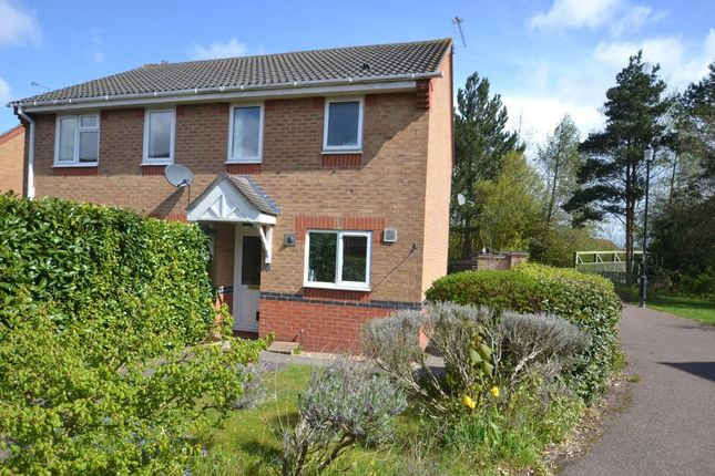 Thumbnail Semi-detached house to rent in Leabrook Close, Bury St. Edmunds
