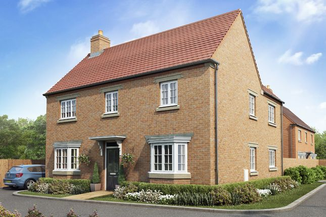 """Thumbnail Detached house for sale in """"Eden"""" at Poppyfields Way, Brackley"""