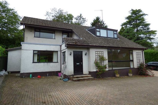 Thumbnail Detached house to rent in Two Oaks, Dinch Hill Lane, Shirenewton, Chepstow