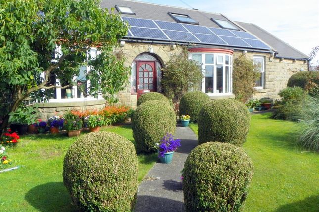 Thumbnail Detached house to rent in Copley Lane, Copley, Bishop Auckland