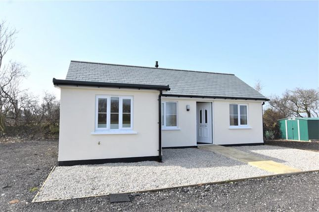 Thumbnail Detached bungalow to rent in Tamar View Farm, Sherwell, Callington, Cornwall