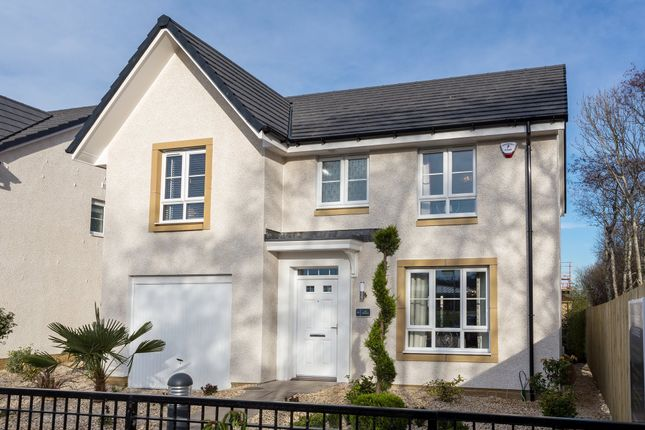 "Thumbnail Detached house for sale in ""Dornoch"" at Rowan Street, Wishaw"