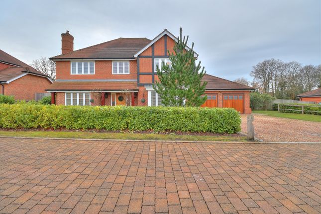 Thumbnail Detached house for sale in Swallow Grove, Cranleigh
