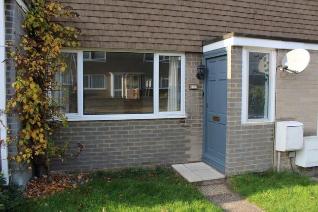 Thumbnail Terraced house to rent in Ivy House Road, Whitstable