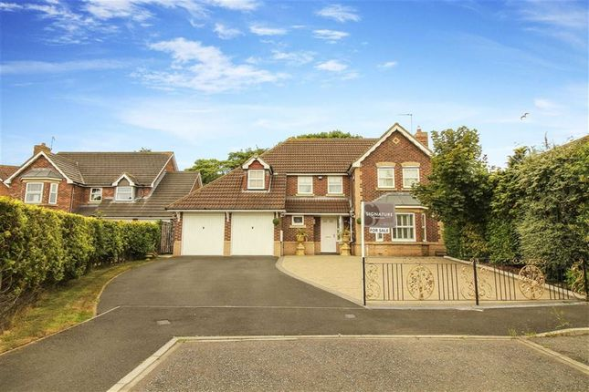 Thumbnail Detached house for sale in The Wynd, North Shields