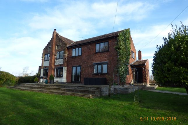 Thumbnail Detached house to rent in Wash Lane, Burgh St Peter, Beccles