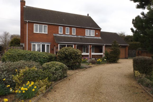 Thumbnail Equestrian property for sale in Hackford Road, Wicklewood, Wymondham, Norfolk