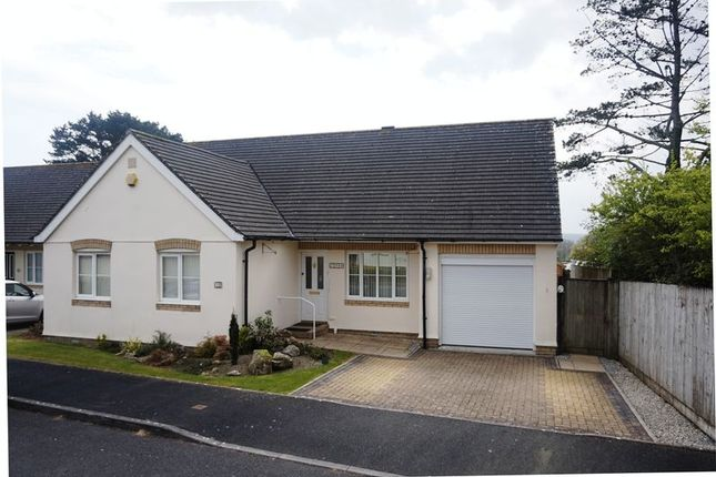 Thumbnail Detached bungalow for sale in Beech Drive, Bodmin