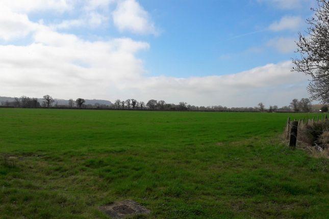 Thumbnail Land for sale in Grittenham, Chippenham