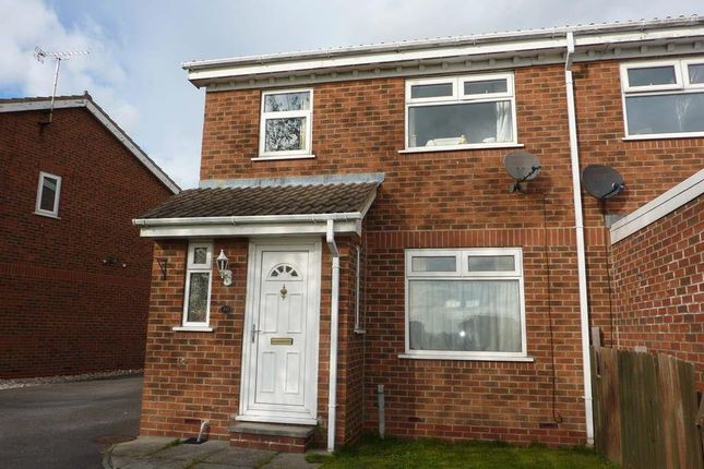 Thumbnail Semi-detached house to rent in Hailstone Drive, Northallerton
