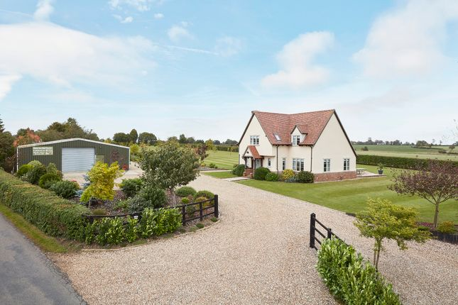 Thumbnail Detached house for sale in Puttock End, Belchamp Walter, Suffolk